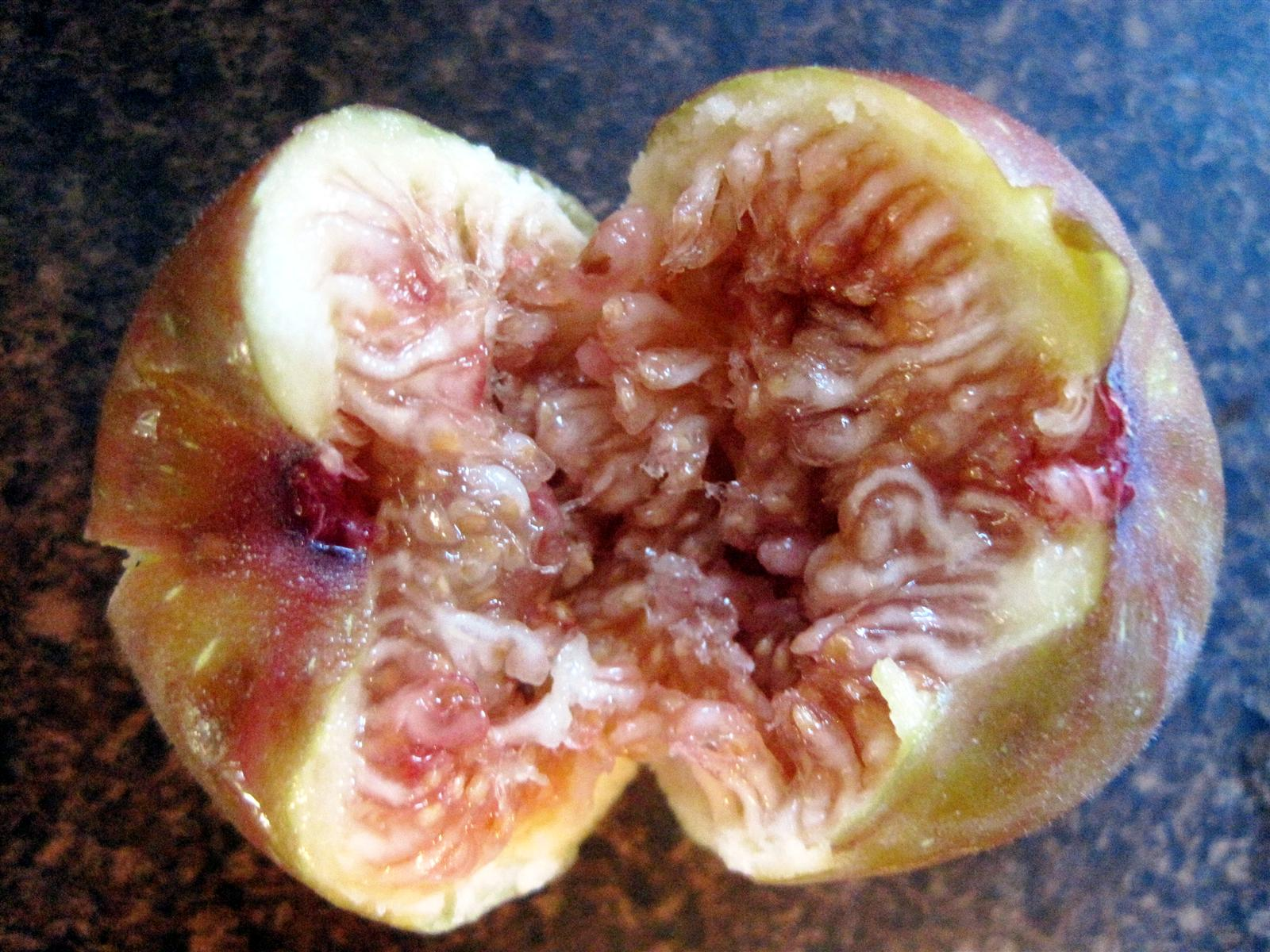 how to look after figs